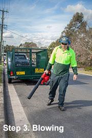 garden-cleanup-sydney