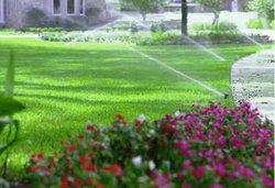 photo_irrigation3